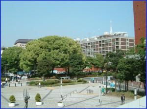 No.256 9月12日(火)どこも本庁舎引越は大問題