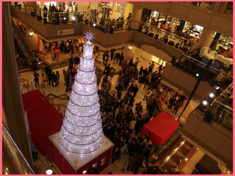 YOKOHAMA xy通信【番外編】今日はクリスマスツリーの日?