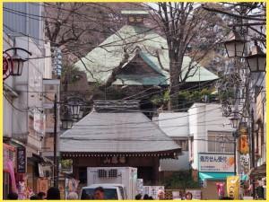 No.411 横浜最古の寺周遊(後編)