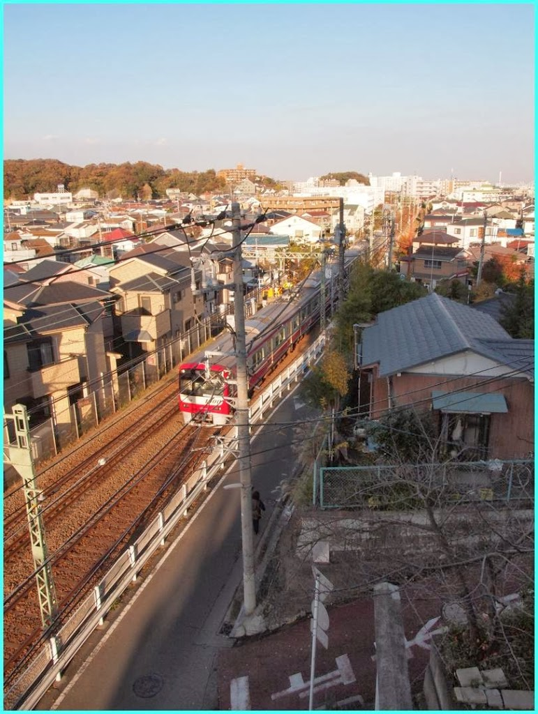 YOKOHAMA xy通信No.473 横浜市かねさわ区独立