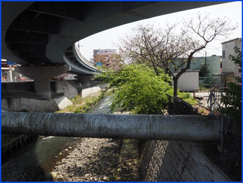 lightP4220134跨線橋下