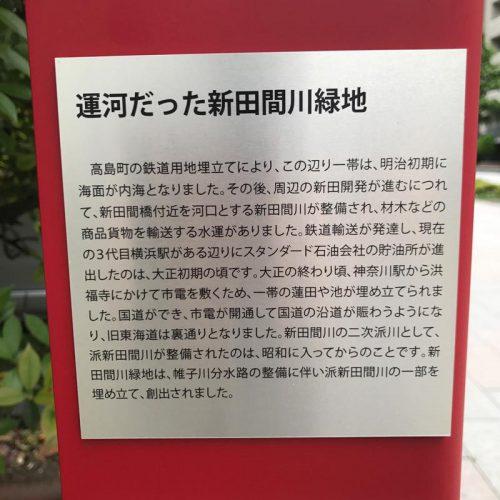 第895話 【横浜のミニ暗渠】新田間川緑道